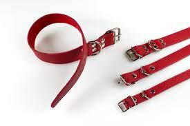 Qpet Obojok kožený TATRAN 2x50cm červený